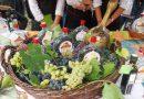 Дни виноградарей
