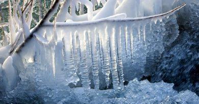 Ледяные дни